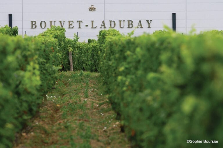 Bouvet Ladubay winery