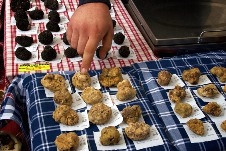 International White Truffle Fair, Alba, Piedmont, Italy, tartufo