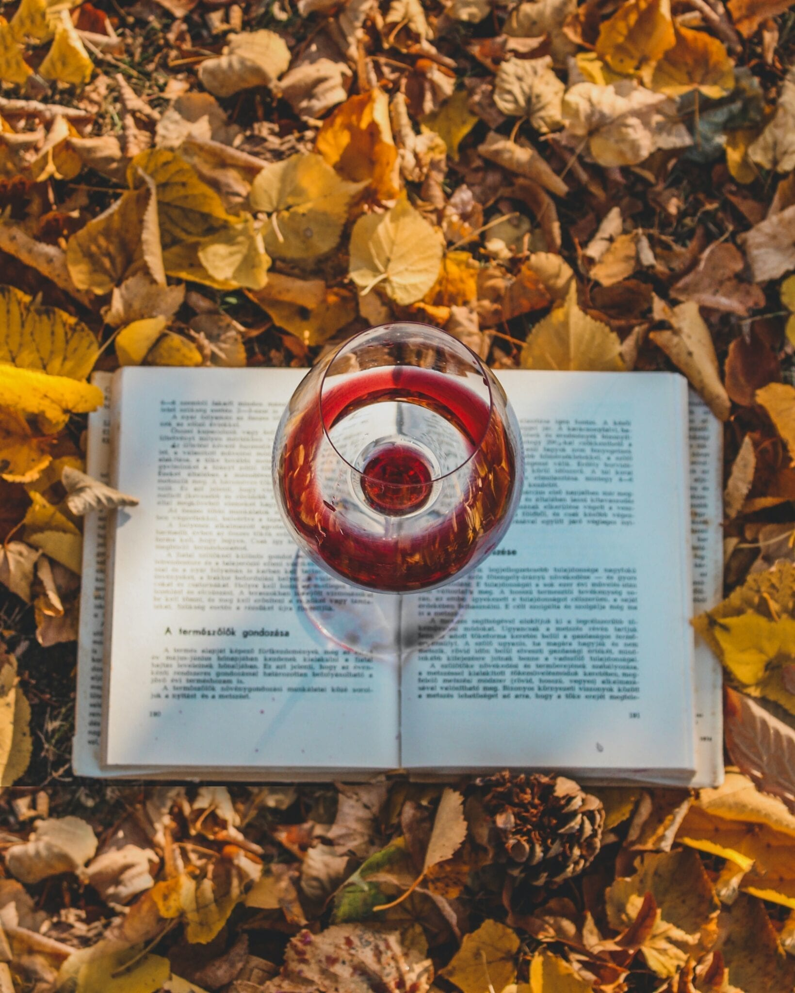 Wine glass, book, autumn leaves