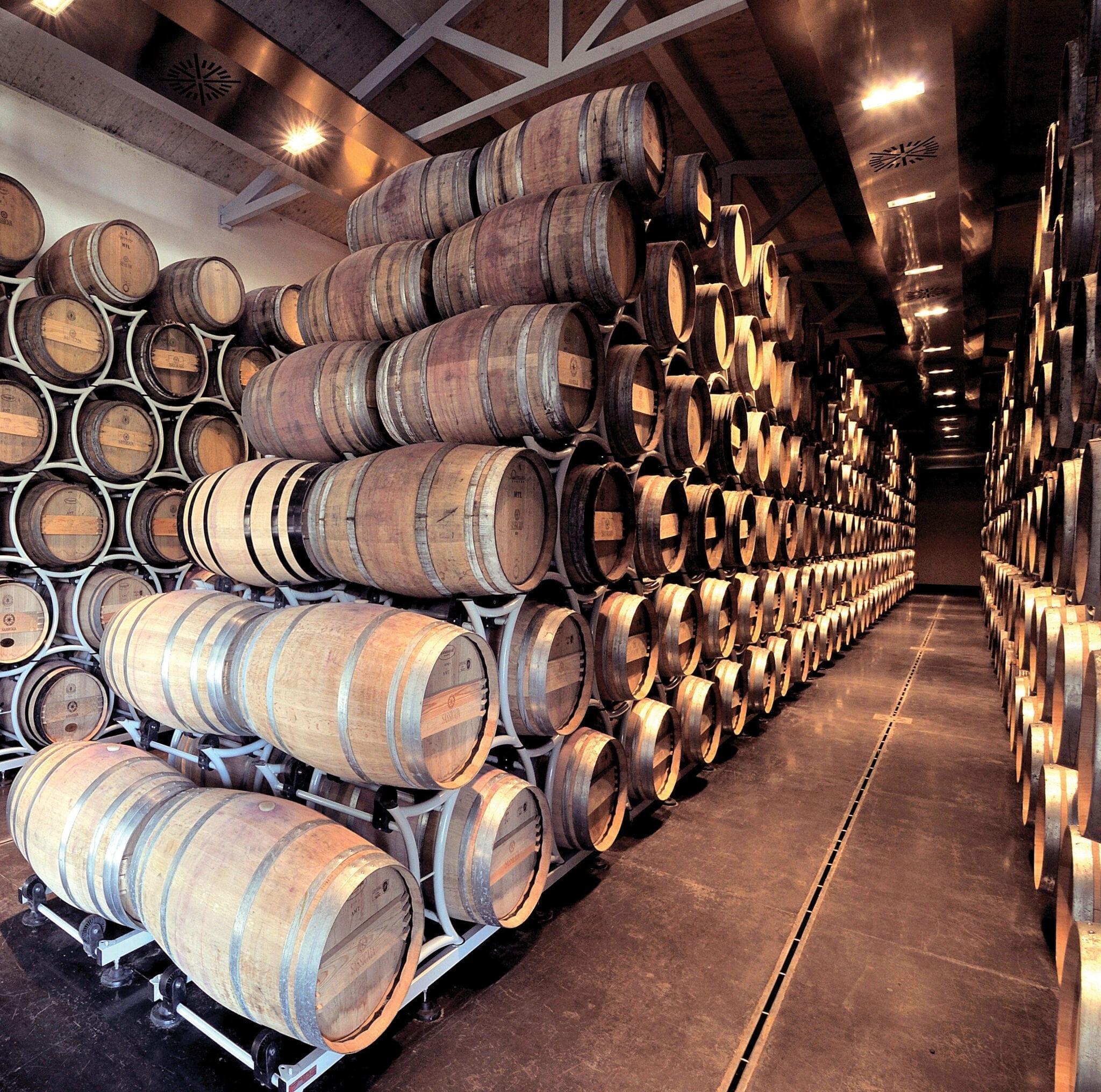 Tenuta San Guido winery, cellars, Sassicaia, wine, barrels