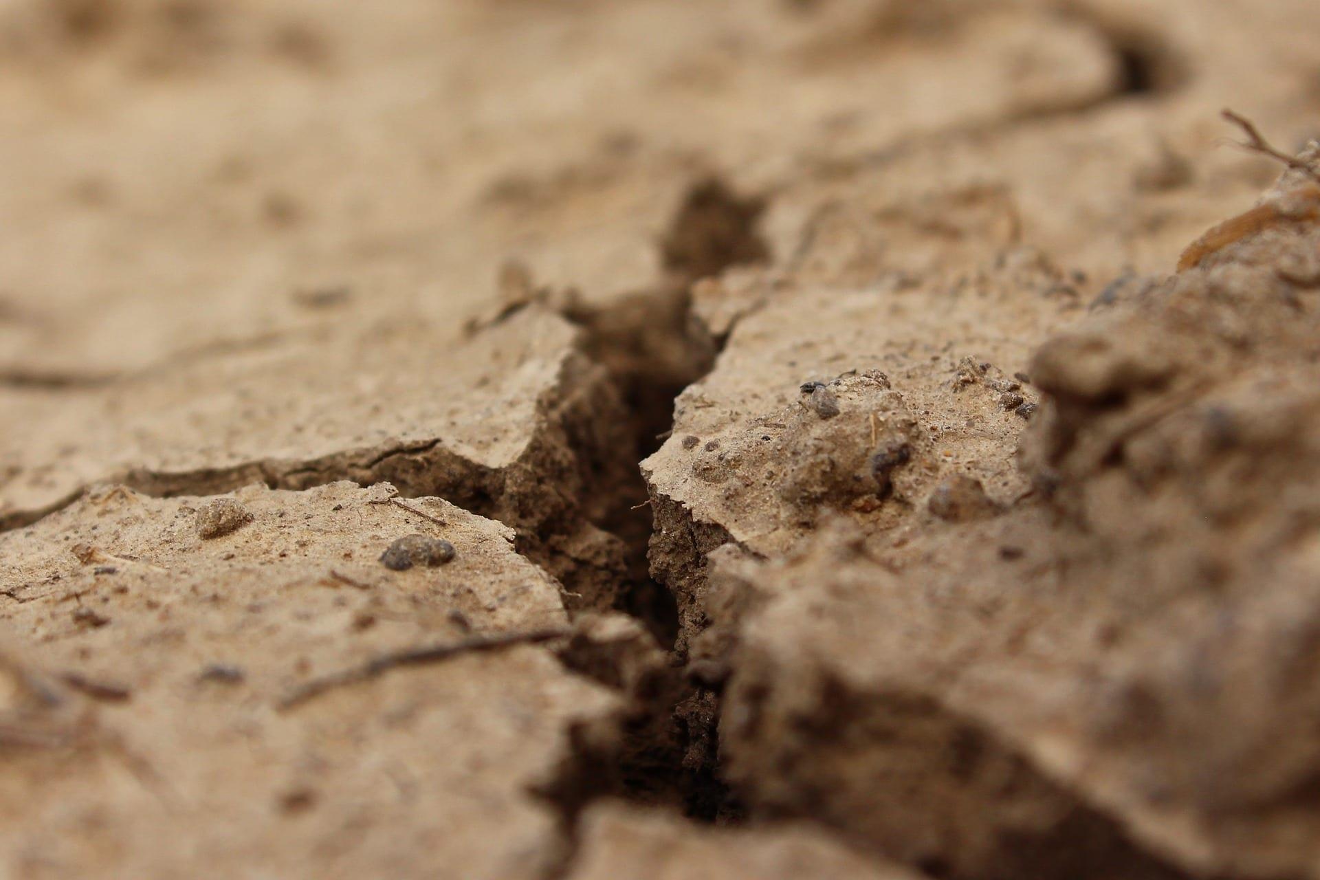 soil dirt