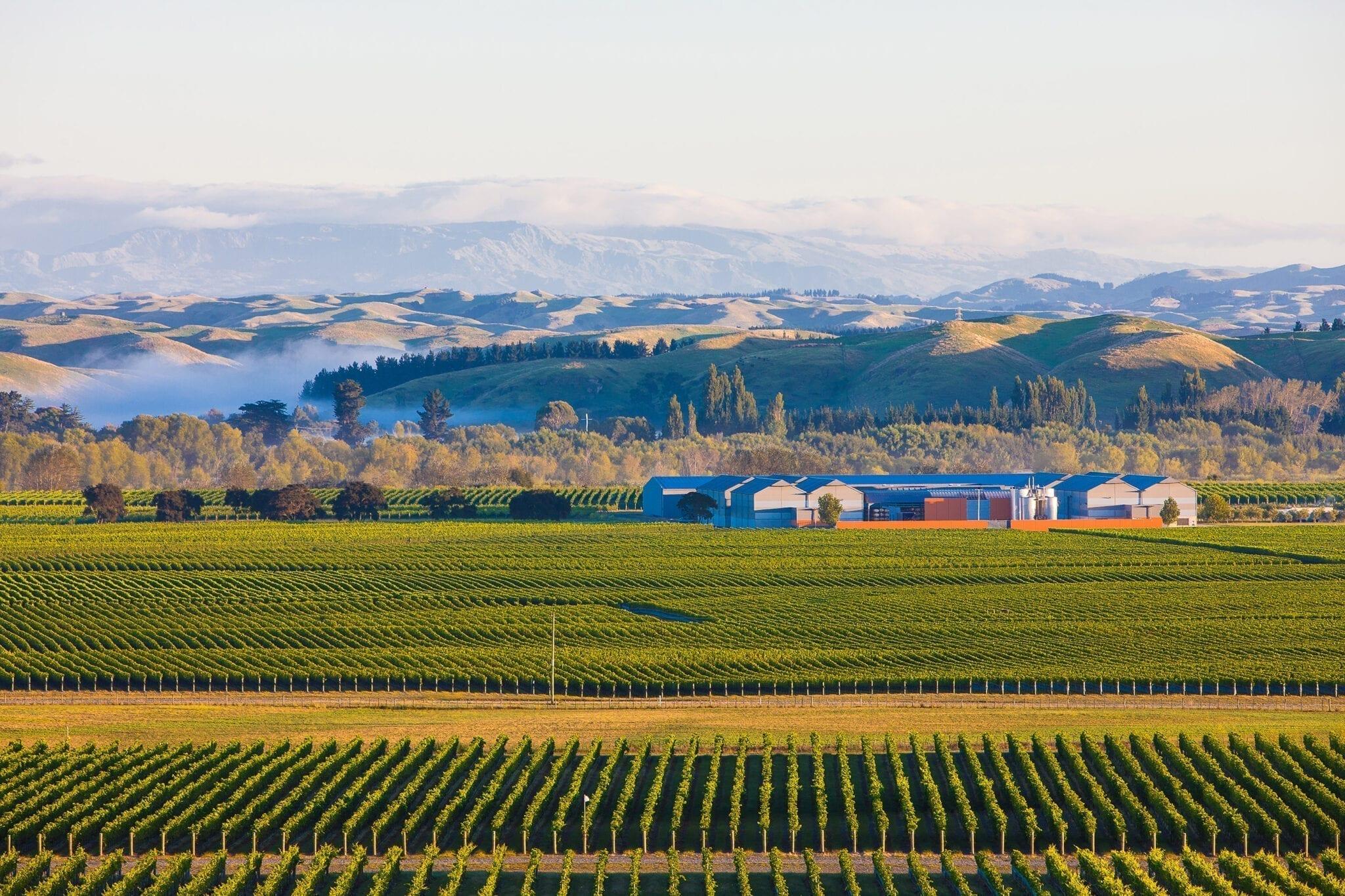 Gimblett Gravels, New Zealand, winery, Craggy Range