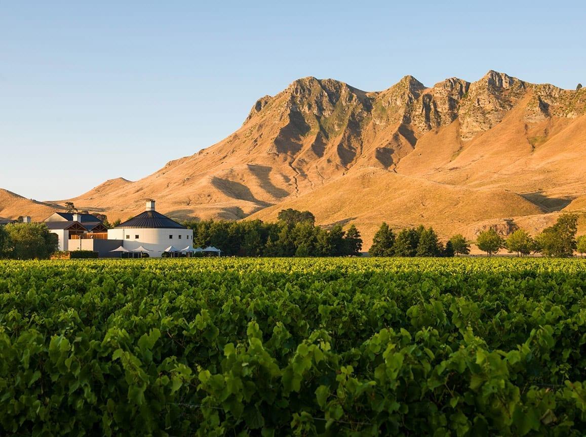 Giants Winery, Craggy Range, New Zealand